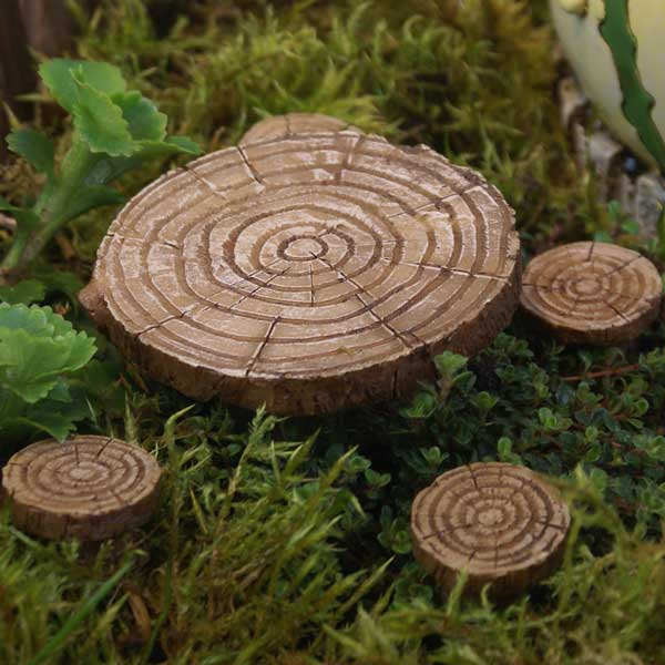 Miniature Garden Accessories Fiddlehead Fairy Houses and Gardens