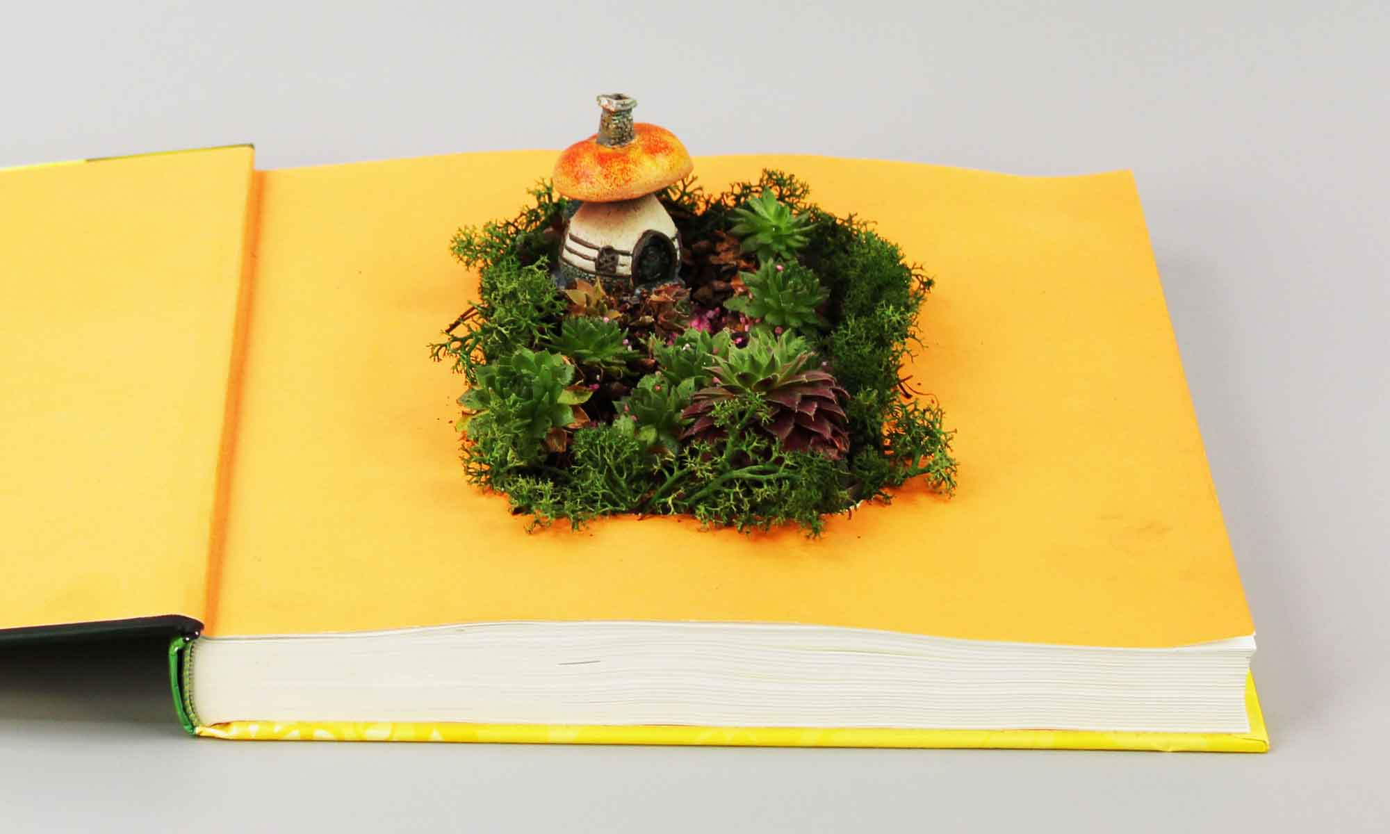 fairy garden in a book by Fiddlehead